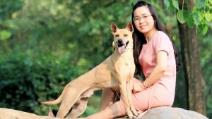 cách nuôi chó Phú Quốc