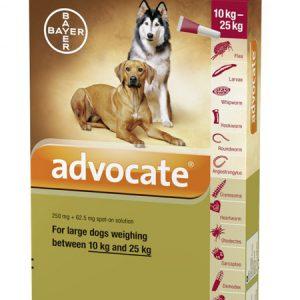 Advocate cho chó 4-10kg- Trị ký sinh trùng