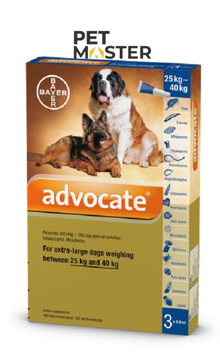 Bayer Advocate - Trị ký sinh trùng cho chó (từ 10-25kg)