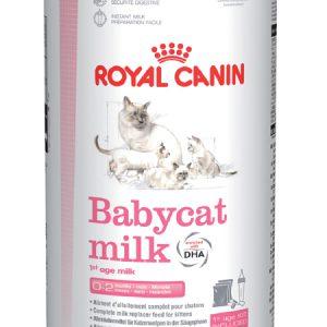 Sữa Cho Mèo Con Royal Canin Babycat Milk