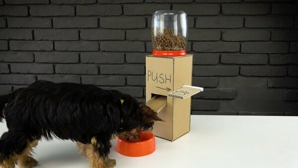 độ thuận tiện của thức ăn hạt Homedog