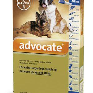 Advocate cho chó 25-40kg