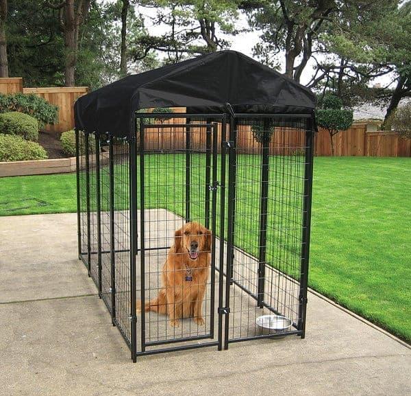chọn chuồng chó