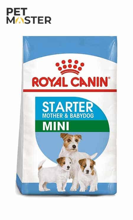 Royal Canin Mini Starter Mother and Babydog