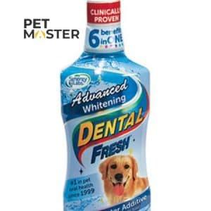 Dung dịch chống hôi miệng cho thú cưng
