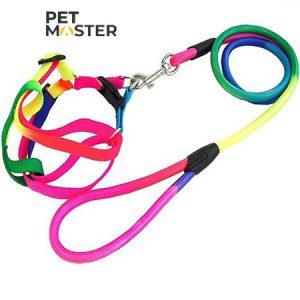 Bộ dây dắt vòng cổ tròn 7 màu cho chó mèo