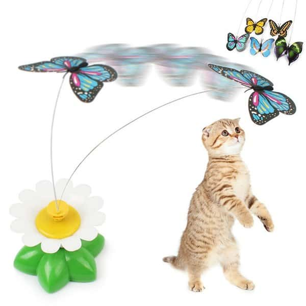 đồ chơi giúp mèo tăng vận động