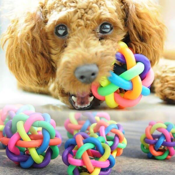 lợi ích của đồ chơi cho chó