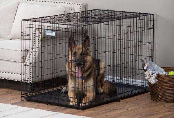 kích thước chuồng chó