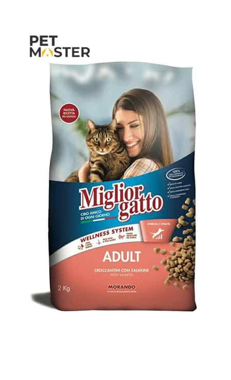 Thức ăn hạt Morando Cat Salmon dành cho mèo ở mọi lứa tuổi
