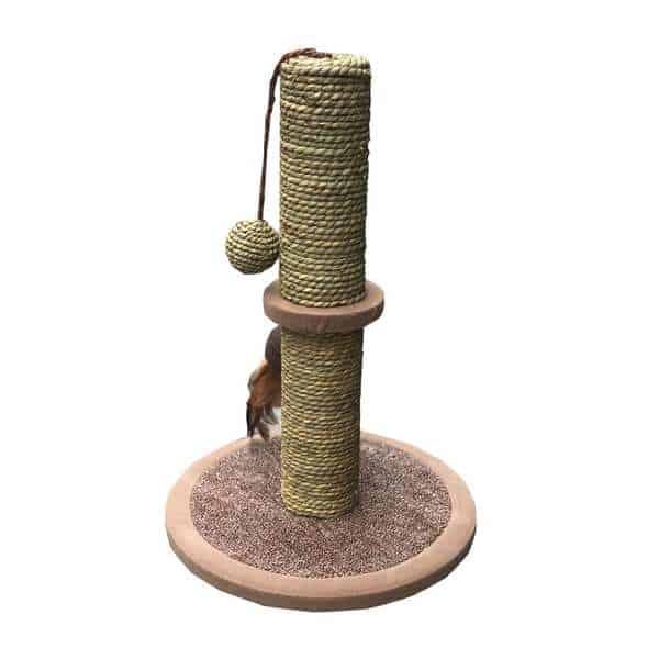 đồ chơi cào móng cho mèo