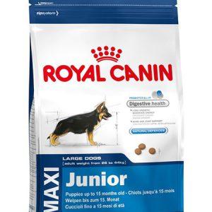 Royal Canin Maxi Junior - thức ăn cho chó con