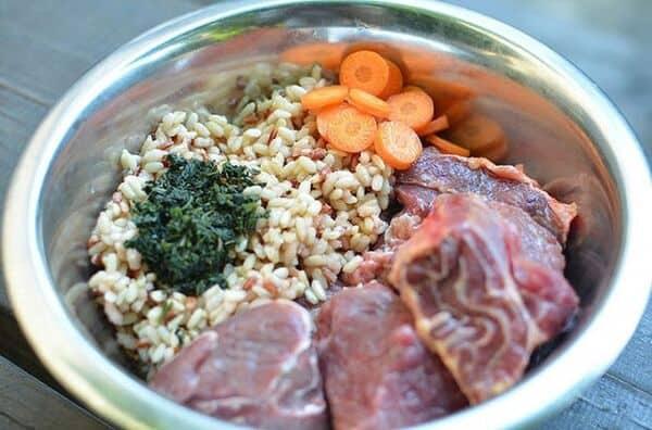 Khẩu phần ăn cho chó Becgie cần cân đối, đủ thành phần dinh dưỡng