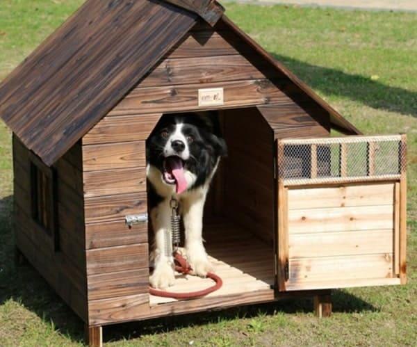 Chuồng chó bằng gỗ