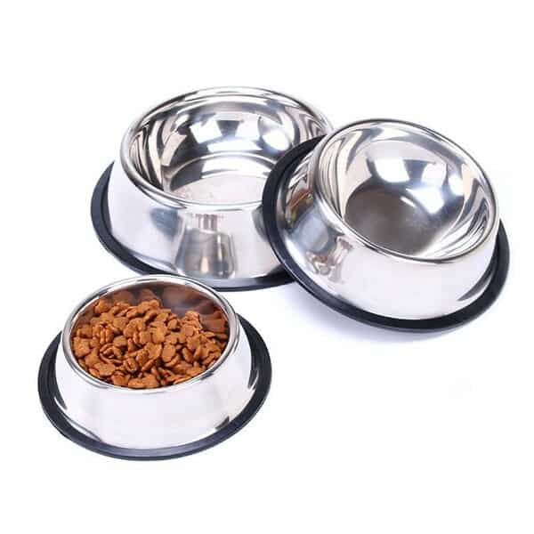 Vật dụng ăn uống cho mèo