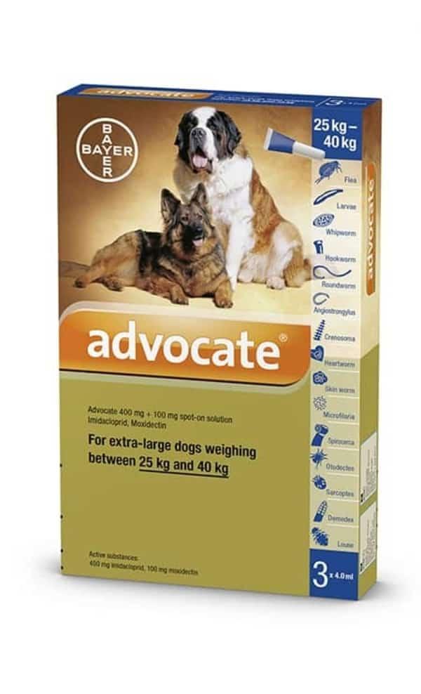 Thuốc và y tế cho chó