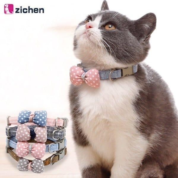 Zichen - Thương hiệu sản phẩm phụ kiện thú cưng được yêu thích nhất hiện nay