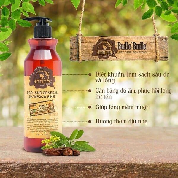 Giải mã sức hút của thương hiệu Budle and Budle Hàn Quốc