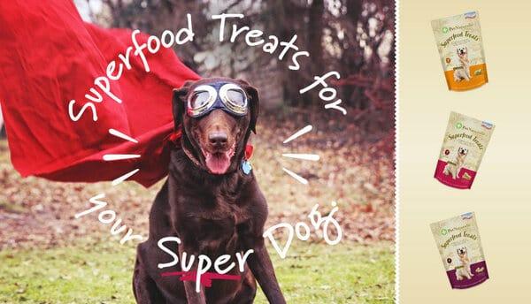 Pet Naturals - Thương hiệu chăm sóc toàn diện sức khỏe thú cưng