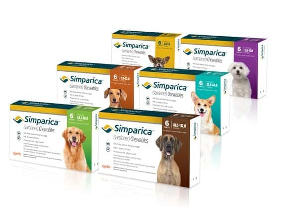Zoetis - thương hiệu chăm sóc sức khỏe thú cưng nổi tiếng của Mỹ