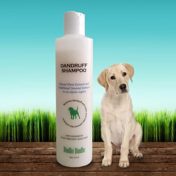 Budle and Budle Ecoland Dandruff Shampoo